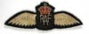 Royal Air Force World War II embroidered pilot wings