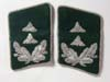 Luftwaffe collar tabs set for a Oberzahlmeister